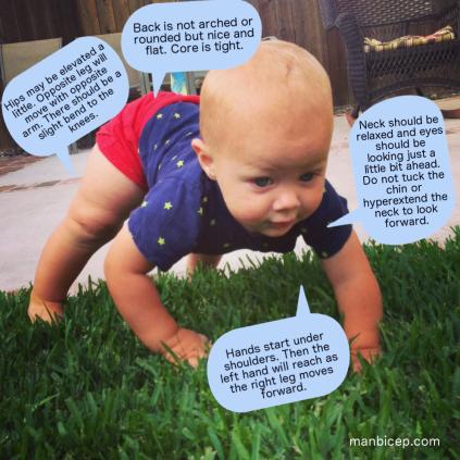 how to bear crawl