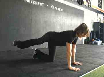 fire hydrant glute activation